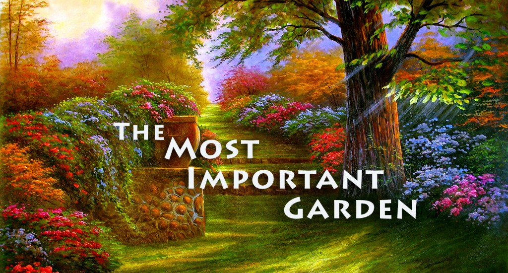 The Most Important Garden N Lightenment
