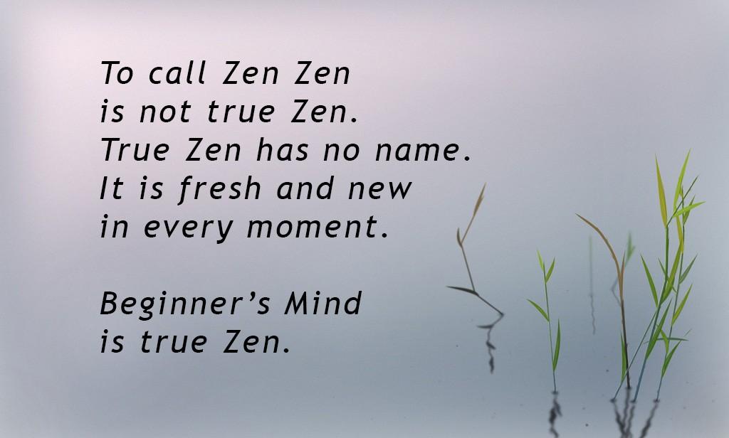 Beginner's Mind - N-lightenment -