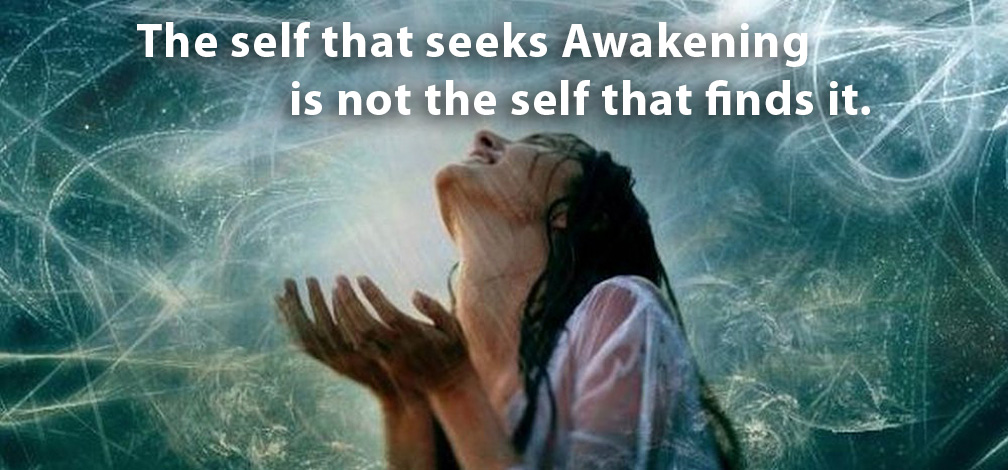 self-seeking-awakening2